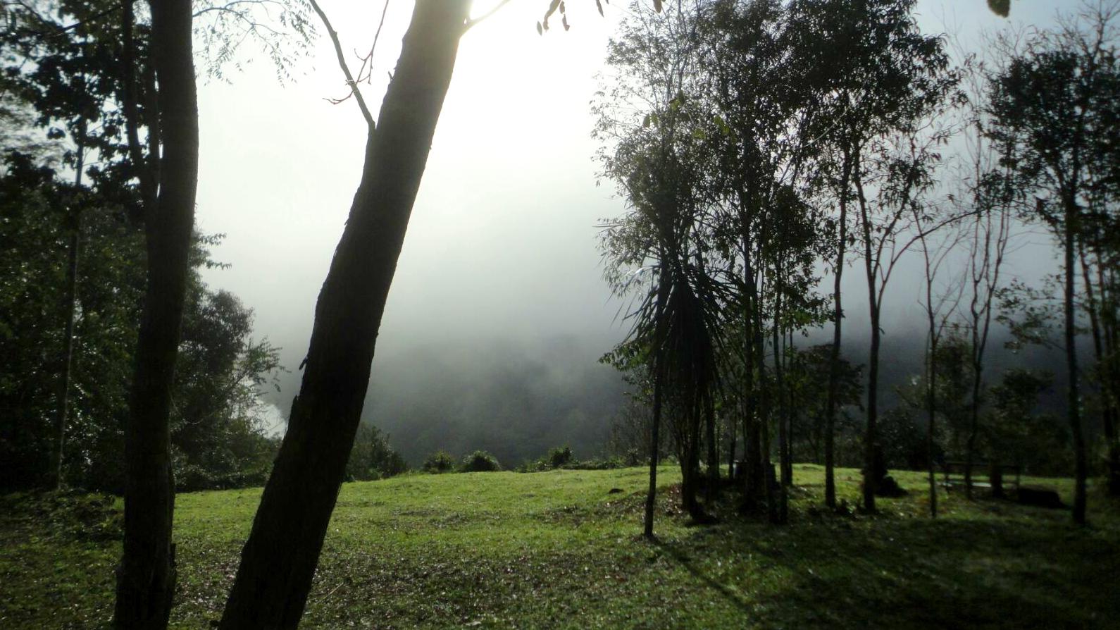 Cabañas Buena Vista