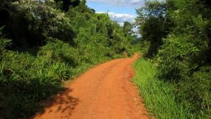 Caminos en la zona